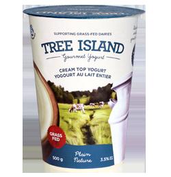 TreeIslandYogurt-CreamTop-Plain
